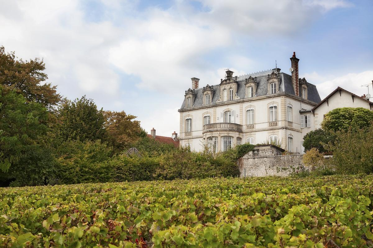 Vineyard with Luxury Chateau Burgundy France