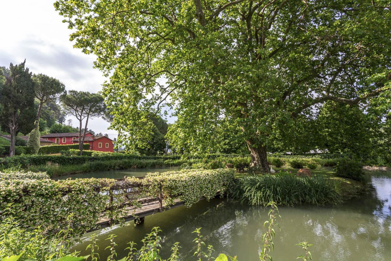 Estate Pond