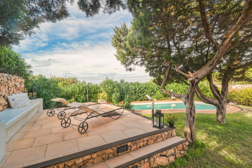 Garden pool Deck
